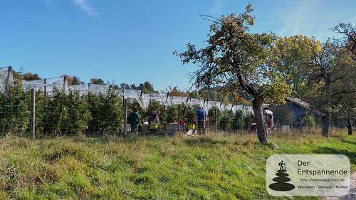 Wandern von Ludwigshafen nach Stockach