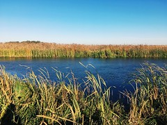 Narwiański Park Narodowy (basiamarcisz) Tags: parknarodowy podlaskie podlasie narew