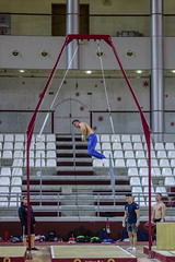 ginastica_doha_21out2018_treinomasc_abelardomendesjr-25 (Ministerio do Esporte) Tags: doha mundialdeginásticaartística qatar ginásticaartística