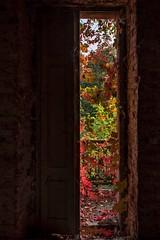 Mauro Amoroso © (Mauro_Amoroso) Tags: urbex abandoned decay mauroamorosoadventures dustysecret room house autumn nikon nikonitalia nital nikkor colour