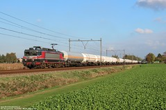 Captrain 1619 - Wouw 19-10-2018. (NovioSites) Tags: trein train 51056 loc locomotive alstom ns1600 rail netherlands holland vlissingensloe sloe geleenlutterade dsm captrain 1619 raillogix lpg ketelwagens