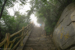 The staircase in the mist / Лестница в тумане (Vladimir Zhdanov) Tags: travel china shaolin mist mountains mountainside nature landscape forest tree people stairs rock stone