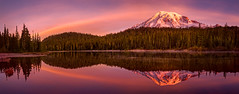 Sunrise reflection Mount Rainier (Mi fantasy) Tags: mountrainier sunrise panorama nature nationalpark landscape reflection morning lake water wilderness pink