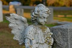 Commemorating All Saints' Day (BKHagar *Kim*) Tags: bkhagar angel statue wings winged girl stone cemetery graveyard commemoration allsaintsday florence al alabama