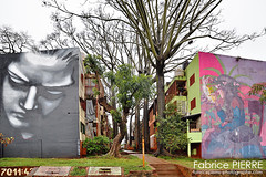 Argentina - July / August 2018 (contact@fabricepierre-photographe.com) Tags: argentina best fabricepierre photographe photographer world flickr streetart graffiti urban graff muralpainting art paint wall argentine wallart urbanart graffitiart street streetphotography mural photography artist streetarteverywhere streetstyle painting artwork streetartist photooftheday spraypaint contemporaryart ig love paris arte travel muralart urbex instaart bhfyp photographie photo nature nikon nikond nikonphotography d