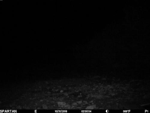 2018-10-31 02:00:04 - Crystal Creek 2
