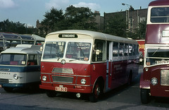 glc - strachans demonstrator on display earls court 30-9-1964 (johnmightycat1) Tags: bus london bedford