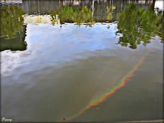 Arcoiris en el estanque (peavy30) Tags: zaragoza cielo sky nubes rainbow arcoiris atardecer otoño lluvia pilares reflejo estanque