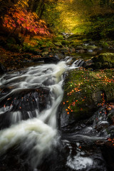 The Birks (devlin11) Tags: scotland scenery sunrise morning autumn colour exposure nikon aberfeldy trees tranquil stream