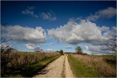 Autumn Ridgeway (JayTeaUK) Tags: ridgeway wiltshire autumn sky clouds pathway