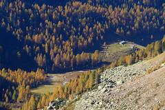 Pascoli incantati (Tabboz) Tags: montagna lagorai lago autunno prati nuvole sentiero escursione cielo erba porfido acqua panorama sole