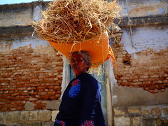 பூங்கதவே தாள்திறவாய் பூவாய் பெண் பாவாய் பொன் மாலை சூடிடும் பூவாய் பெண் பாவாய். (Prabhu B Doss) Tags: prabhubdoss fujifilm gfx50s gf3264mm usilampatti madurai farmer woman india tamilnadu travelphotography portrait