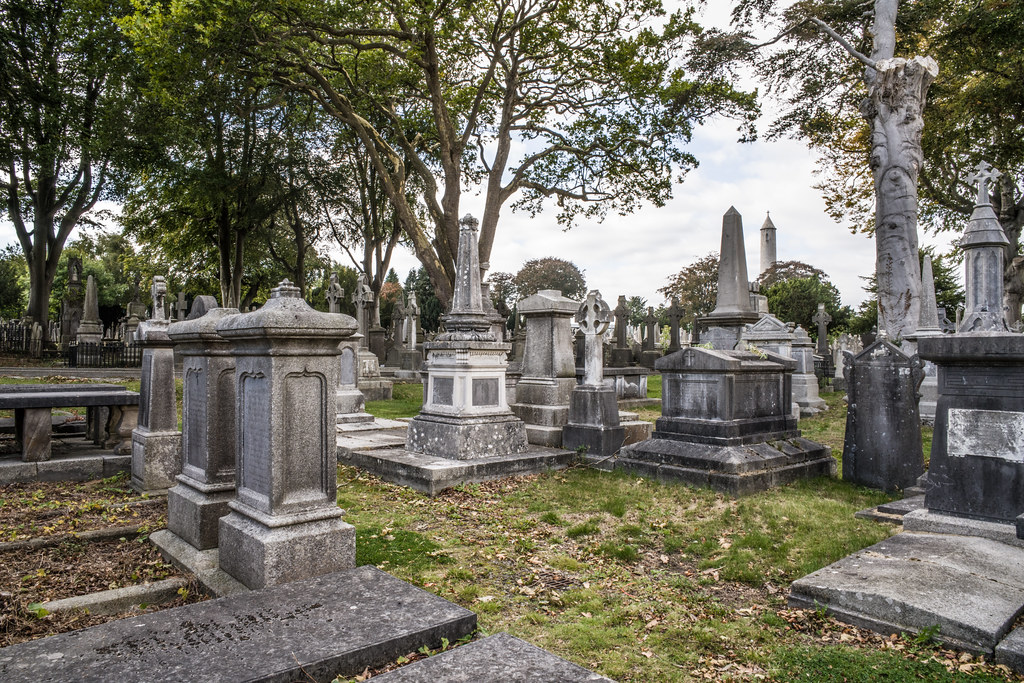 SEPTEMBER 2018 VISIT TO GLASNEVIN CEMETERY [ I USED A BATIS 25mm LENS AND I EXPERIMENTED WITH CAPTURE ONE]-144769