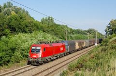 Priemerný taurus, priemerný vlak (Nikolaj Šeršeň) Tags: 1116 1116024 taurus siemens austria zurndorf nickelsdorf freight train šero obb rca