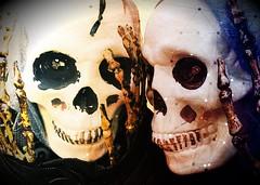 Two skulls (mrgraphic2) Tags: two skulls heads halloween horror