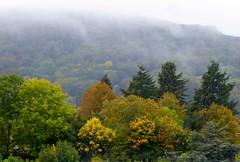 Autumn day On the Malverns. (jenichesney57) Tags: