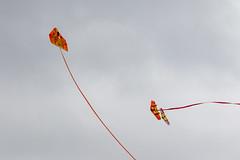 PiggottFunFly-20181013-0045 (Sam W. Hummelstein) Tags: airplanes controlled fly fun piggott rc