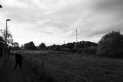 DSC00047 (nick.upton19@btinternet.com) Tags: stafford baswich canal walk song rx100