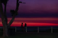 10003502.jpg (KevinAirs) Tags: kevinairs ocean sunset travel westernaustralia ©kevinairswwwkaozcomau sand sky landscape landscapes beach australia sea