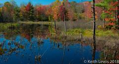 New Hampshire Lake (keithhull) Tags: autumn fall lake pond trees colour reflection newhampshire newengland unitedstates 2017