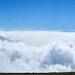 into a sea of clouds