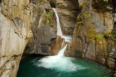 Falling green (Johnston Canyon, Canada) (armxesde) Tags: pentax ricoh k3 canada kanada banff banffnationalpark rockymountains alberta schlucht johnstoncanyon tree baum felsen rock