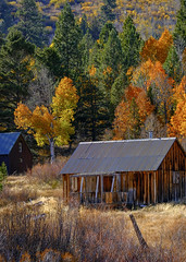 Hope Valley Cabin (Old as you feel, Fujinite) Tags: cabin autumn fall colors trees hopevalley california fuji xt3 fujifilm fujinon 100400 landscape outdoor nature scenic