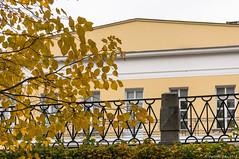 Осенние раздумья (vladimirdar1) Tags: vladimirdar архитектура городскойпейзаж золотаяосень золото осень прогулкипомоскве александровский сад москва