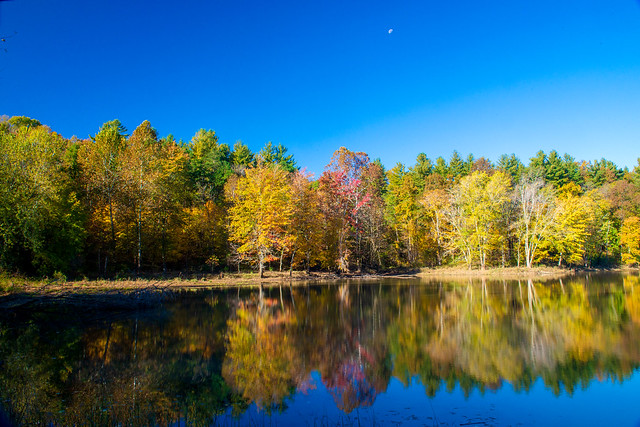 Hoosier National Forest - Saddle Lake - October 29, 2108