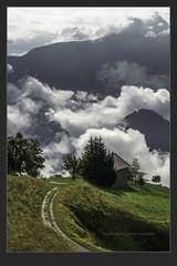 Un peu de Toscane en Savoie #DH739 (Didier Hannot Photography) Tags: landscape landscapephotography landscapephotographer landscapelovers photodart fineart fineartphotography fineartphotographer didierhannotphotography dh739 savoie savoie2018 montagne mountain mountains latoussuire cloudy cloudysky cloudyskies morningvibes morninglight morningsun