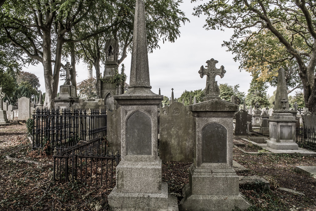 SEPTEMBER 2018 VISIT TO GLASNEVIN CEMETERY [ I USED A BATIS 25mm LENS AND I EXPERIMENTED WITH CAPTURE ONE]-144841