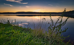 Bostalsee et son charme (Fred LP) Tags: lac lake sunset sun colors colored nature landscape landscapes grass waterscape waterscapes water germany bostalsee bostal saarland