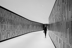 on the way to the office (heinzkren) Tags: schwarzweis blackandwhite bw sw monochrome urban candid panasonic lumix woman silhouette gang passage wien vienna contemporary modern architecture architektur street streetphotography composing corridor design lines panels paneele goldcollection