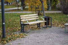 PA130036 (bnx_vs) Tags: penf olympus mzuiko 43 micro autumn