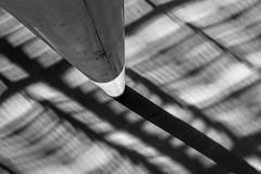 (Feininger's Cat (Thanks for 1.3 million views!)) Tags: summaritm50mmf24 leica leicam8 blackandwhite apsh leicasummaritm12450 summarit summarit50 50mm leicam rangefinder messsucher ccdsensor