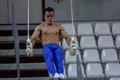 ginastica_doha_21out2018_treinomasc_abelardomendesjr-23 (Ministerio do Esporte) Tags: doha mundialdeginásticaartística qatar ginásticaartística