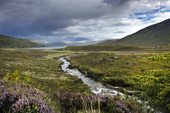Loch Ainort (albireo 2006) Tags: lochainort isleofskye scotland skye loch glen stream uk landscape heather river