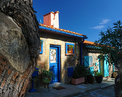 Back to your roots (Francoise100) Tags: france frankreich sky sun sunny door shutters cobblestones tree rings trunk tronc arbre porte maison house catalunya catalogne catalonia payscatalan bright light lumiere painters inspiration