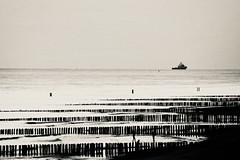 .....||||||| (rienschrier) Tags: beach strand zwartwit contrast river