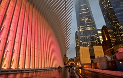 Holiday 2016, 12.03.16 (gigi_nyc) Tags: nyc newyorkcity holiday holiday2016 oculus wtcoculus holidaylights holidaylightshow