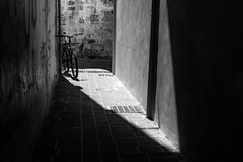 Shadows and Stillness VI
