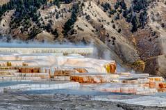 Mammoth Hot Springs (sibnet2000) Tags: yellowstonenationalpark wyoming unitedstates mammothhotsprings yellowstone