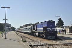 D_1018_D028423 (MU4797) Tags: trein spoorwegen hz hld 2044