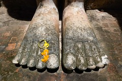 Wat Mahathat ..Sukhothai..Unesco site (geolis06) Tags: geolis06 asia asie thaïlande olympus sukhothaï bouddhisme bouddha buddhism religion pilgrim pélerin prière prayer statue main patrimoinemondial unesco unescoworldheritage unescosite watmahathat buddha olympusem5 olympusm1240mmf28
