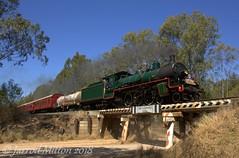 Over The Bridge (Mittens_97) Tags: steam steamtrain steamlocomotive bety bb1814 bb18¼1079 queensland queenslandrail arhsqld australia green