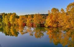 05 10 2018 B (gillesfournier005) Tags: le05102018 eau rivière couleurs arbres buisson d5100 maison ciel