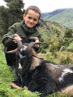 New Zealand Free Range Hunting - Marlborough 46