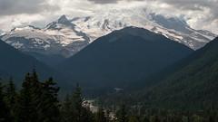 (Brendan Erazo) Tags: wildwashington rainier mountain volcano pnw northwest forest nationalpark park