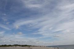 BigSky (PurpleZedCreations) Tags: beach grasses seagulls sand flags ice shell shells water fountain waterfountain feather bird birds grass landscape waves sky blue