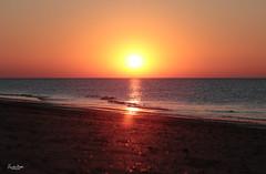 The Costa Holandia (VandenBerge Photography) Tags: sunset beach brouwersdam autumn thenetherlands nature nationalgeographic lonelyplanet horizon sun orange northsea waves landscape seascape zeeland